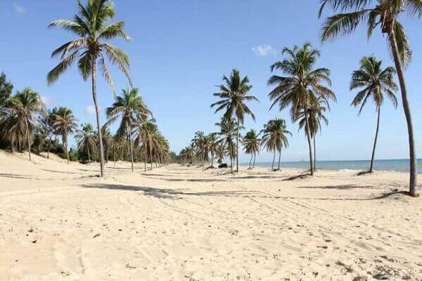 Praia de Canoa Quebrada ceara brasil